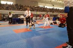 Polish Open Cup Taekwondo ITF / Tiger Cup, Dzierżoniów, 2-3.03.2019